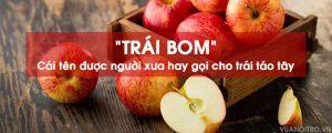 trái táo tây